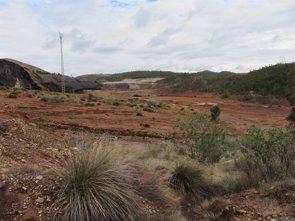 Un estudio indica que exposición a metales en entornos mineros aumenta el riesgo de padecer cálculos biliares (UNIVERSIDAD DE GRANADA)