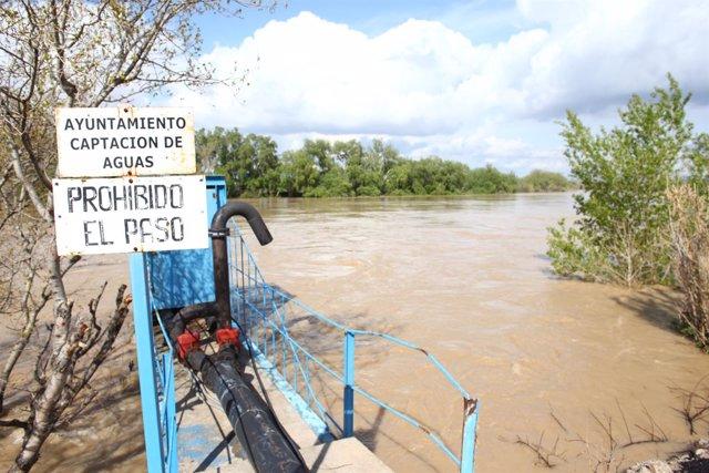 El río Ebro a su paso por la localidad de Quinto.