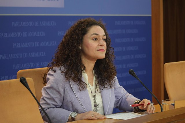 La portavoz adjunta del grupo parlamentario de IU Andalucía Inmaculada Nieto