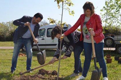 El Ayuntamiento celebra la 'Semana del árbol' con la plantación de más de 200 ejemplares