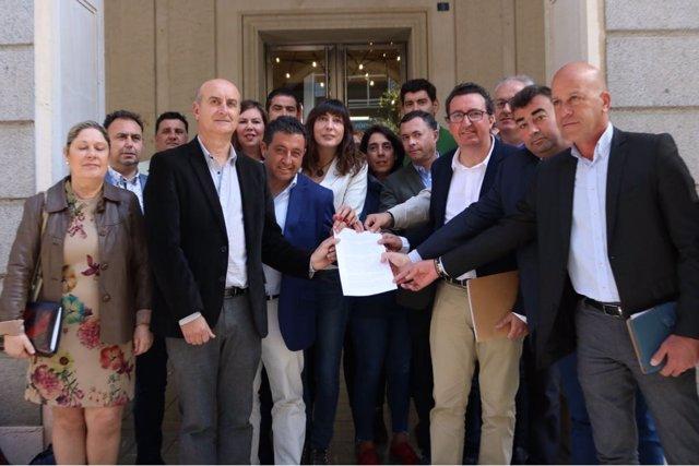 Alcaldes del PP e independientes registran una carta en la Diputación.
