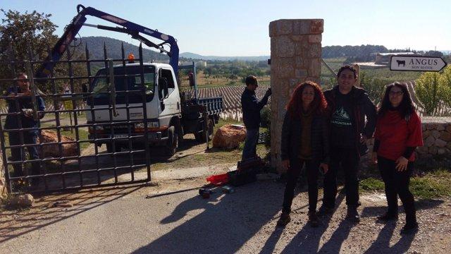 Retirada de las barreras del camino de Can Mallol