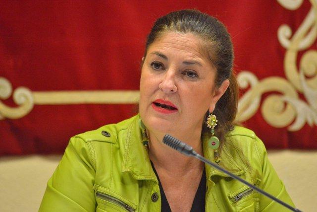 """Allende: """"El Hierro no tolerará ser la papelera de reciclaje de la conectividad de Canarias"""""""