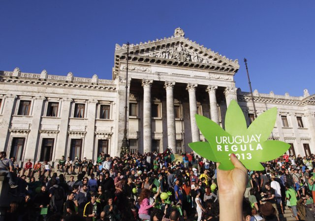 "People participate in the so-called ""Last demonstration with illegal marijuana"""