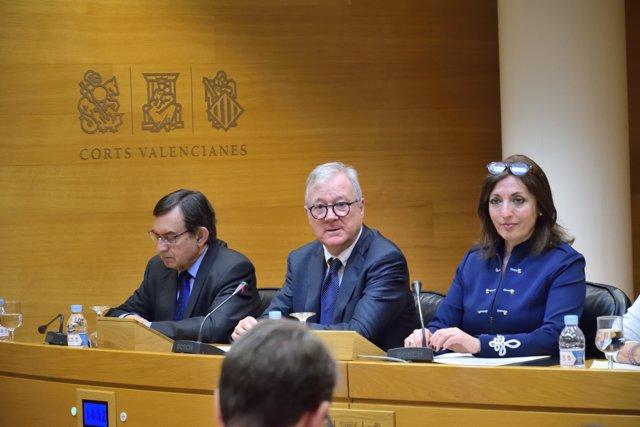 Valcárcel en la Comissió de les Corts per les institucions firals
