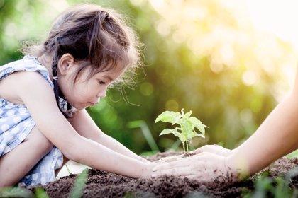Cuidemos el planeta: 10 reglas de oro para enseñar a los niños