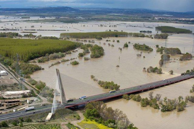 Crecida del Ebro en el puente de Castejón
