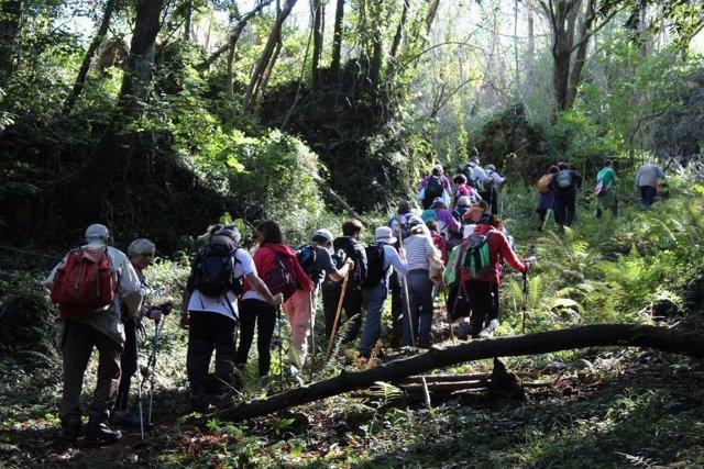Salidas por la naturaleza de Bosques de Cantabria