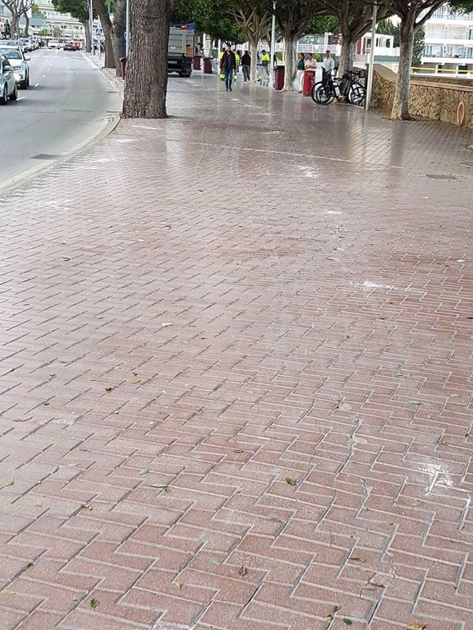 Cs Calvià denuncia que el Ayuntamiento destruye el suelo del paseo de Palmanova durante la feria del libro