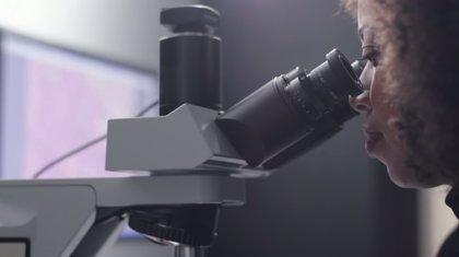 El microscopio de realidad aumentada de Google aplica la inteligencia artificial a la detección del cáncer