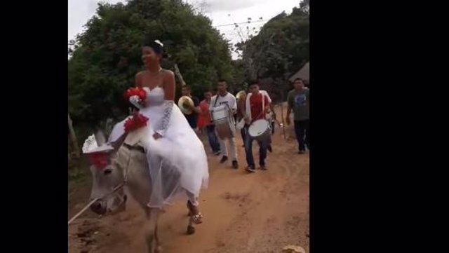 Novia motanda en burro