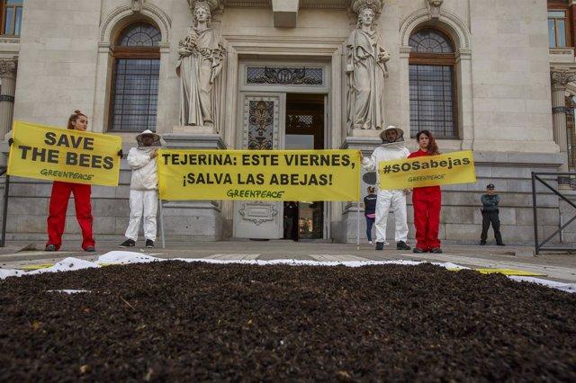 Greenpeace pide al Gobierno que vote a favor de prohibir neonicotinoides