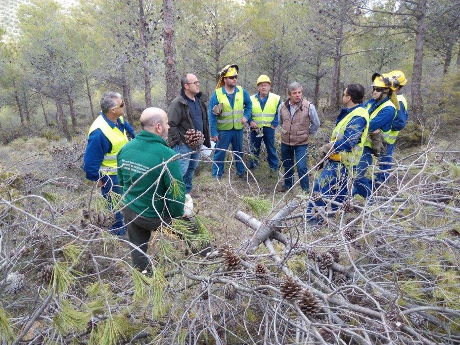 Foto: Trabajos preventivos en el monte Aznaitín y Dehesa del Lanchar, en Jimena para la mejora de la biodiversidad (JUNTA DE ANDALUCÍA)