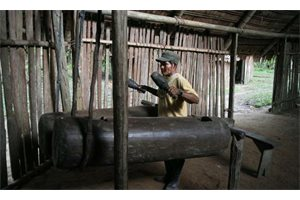 Una tribu amazónica emula su lenguaje a ritmo de tambor