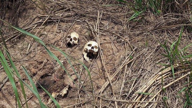 Fosa común en Kasai Central (RDC)