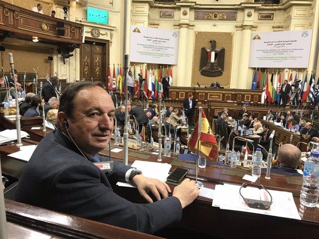 Pedro Sanz, en Egipto