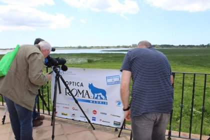 'Doñana Natural Life' destaca el potencial de la fotografía y la videografía de naturaleza para el ecoturismo
