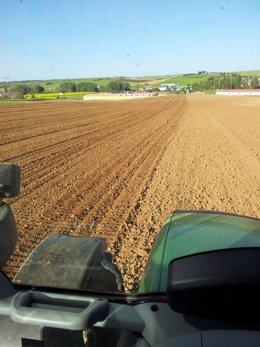 Un agricultor ara su tierra de labor