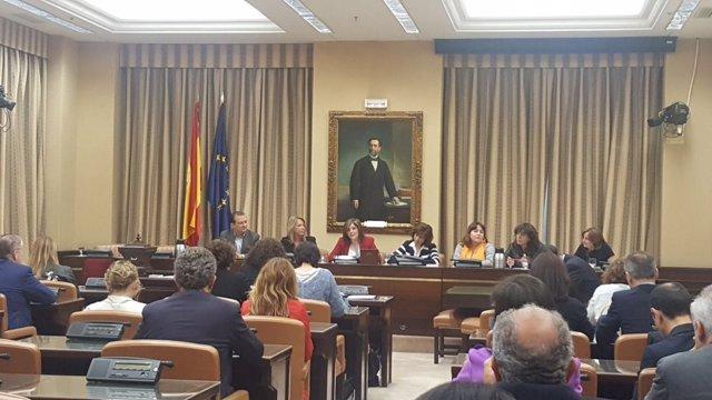 Mesa de la Comisión de seguimiento del Pacto contra la violencia machista