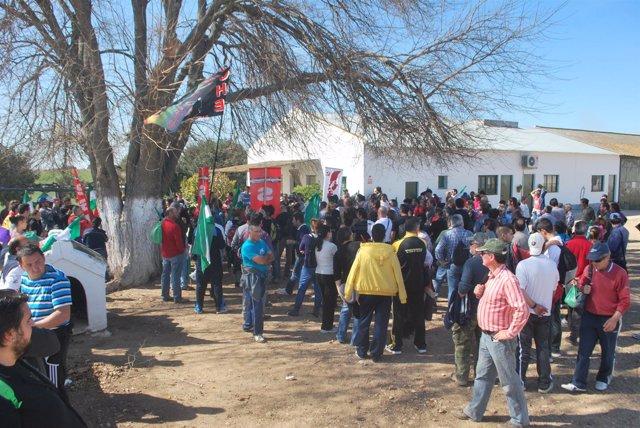 Jornaleros, durante una de las ocupaciones de la finca de Somonte