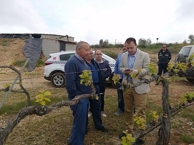 Apoyo al sector vitivinícola de la provincia de Granada