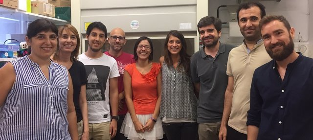 Investigadores de la Universidad de Barcelona presentan avance contra diabetes