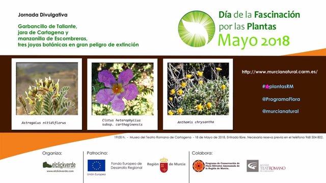 Imagen del cartel de los actos del Día de la Fascinación de las Plantas