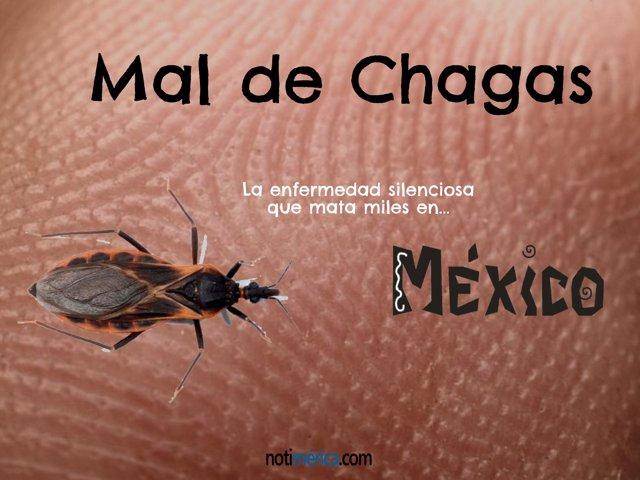 Mal de Chagas- enfermedad silenciosa