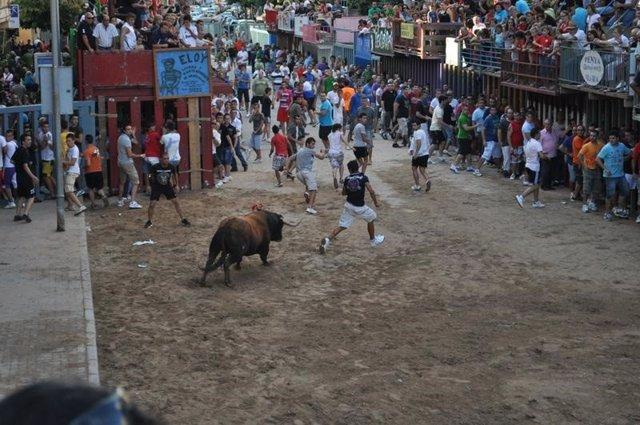 Imagen de archivo del 'bou per la vila'