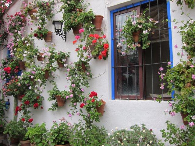 Los patios son uno de los principales atractivos turísticos de Córdoba