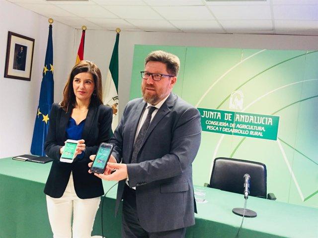 Rodrigo Sánchez Haro presenta la app 'InfoPAC' en rueda de prensa