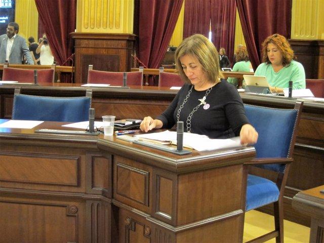 La consellera de Cultura, Fanny Tur, momentos antes del pleno del Parlament