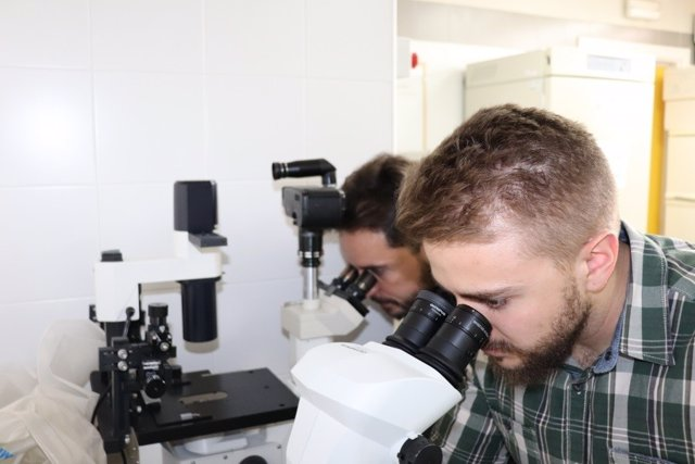 Dos de los autores del artículo analizando una muestra