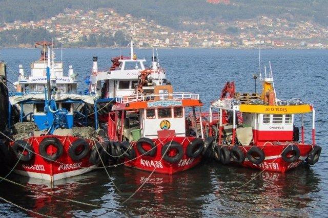 Pesqueros en el Puerto de Vigo