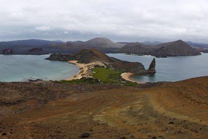 Ecuador obligará a tener un seguro de salud y una reserva de hotel para visitar el archipiélago de las islas Galápago