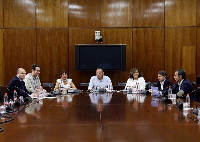 Reunión del grupo de trabajo para la reforma de la Ley Electoral de Andalucía