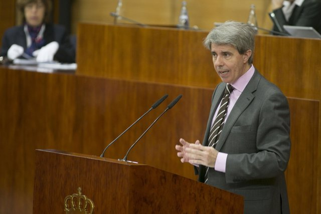El presidente de la Comunidad en funciones, Ángel Garrido, en la Asamblea