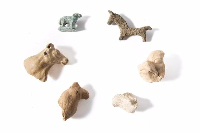 Exposición animalia