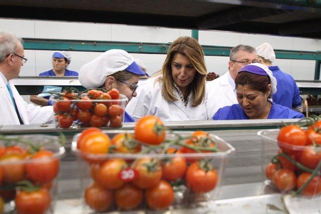 Díaz dialoga con dos envasadoras de la cooperativa Vicasol en Almería
