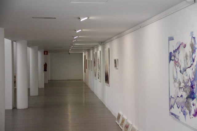 Victoria Jáimez exposición en Diputación arte cultura