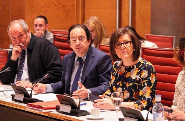 Luis Aznar, comisión investigación financiación Senado