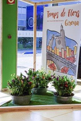 El Aeropuerto de Girona participa en la muestra floral 'Temps de Flors'