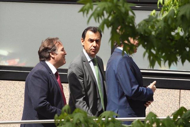 Maíllo acude al pleno de investidura de Ángel Garrido
