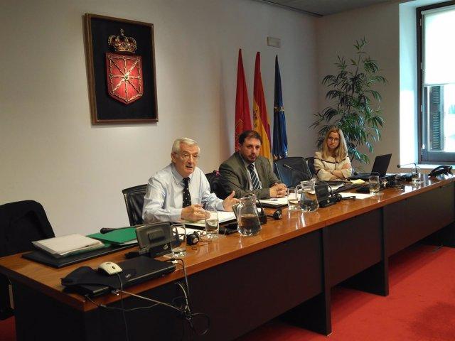 Lorenzo Riezu, en la comisión de investigación de CAN