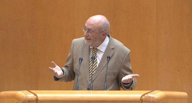 El senador socialista José Caballos durante la defensa de la moción en el Senado