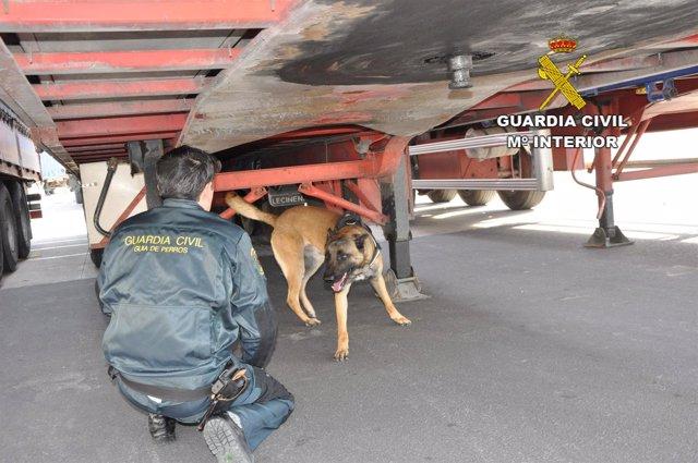 Un agente de Guardia Civil inspecciona un camión en el Puerto de Almería