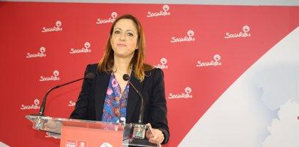 """Maestre (PSOE): """"Cuando Cañizares habla de problemas de liderazgo se debe referir al PP"""""""