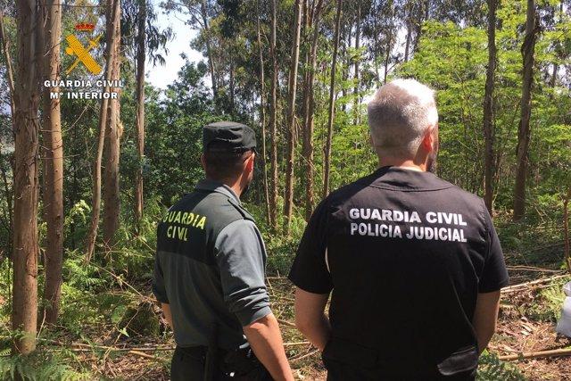 Foto de la zona donde ha sido localizado el cadáver