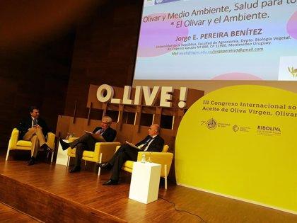 Expertos advierten en O_LIVE! en Jaén sobre los peligros de la obesidad y la necesidad de una dieta saludable