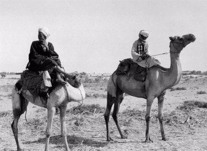 La biblioteca de la UNED acogerá la exposición de fotografía 'Egipto 1930' del 30 de mayo al 29 de septiembre